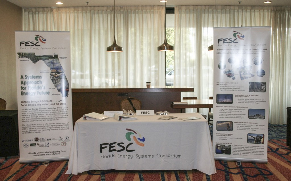 FESC May 2015 Workshop